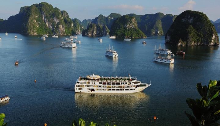 cruises on halong bay